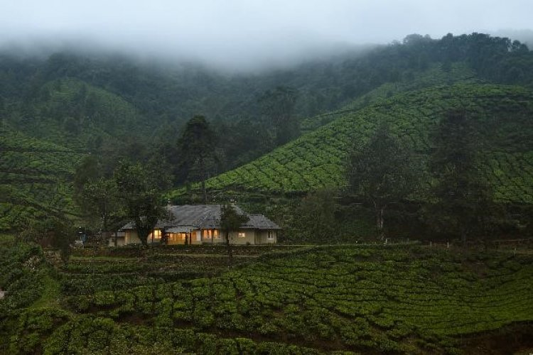 amã STAYS & TRAILS STEPS INTO MUNNAR WITH THE OPENING OF A COLLECTION OF SEVEN TEA ESTATE BUNGALOWS.